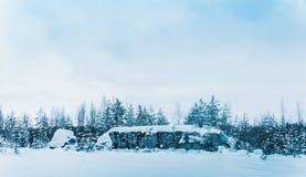 покрытые Снег шири Karelia стоковые изображения rf