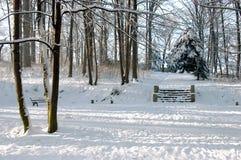 покрытые шаги снежка парка стоковое изображение