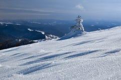 покрытый вал снежка Стоковое фото RF