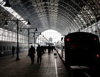 покрытый железнодорожный вокзал Стоковые Изображения RF