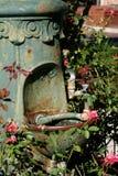 покрытый завод выпивая фонтана Стоковые Фотографии RF