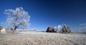 Покрытый изморозью ландшафт горы стоковое фото