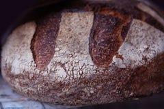 Покрытый коркой хлебец хлеба рож Стоковые Изображения