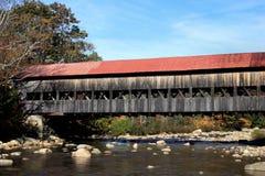 покрытый мост albany Стоковые Изображения RF