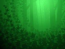 покрытый плющ пущи Стоковая Фотография