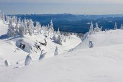 Покрытый снегом ландшафт зимы Стоковая Фотография RF