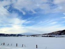 покрытый Снег ландшафт в зиме в Колорадо Стоковые Изображения RF