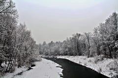покрытый Снег ландшафт стоковые изображения rf