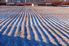 покрытый Снег ландшафт стоковое фото