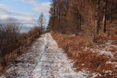 покрытый Снег ландшафт стоковая фотография