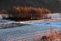 покрытый Снег ландшафт стоковое изображение