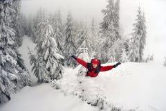 покрытый Снег лес в шторме Стоковые Изображения RF