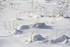 Покрытый снег луг с смещениями Стоковое Изображение RF