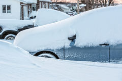 Покрытый снег Стоковая Фотография RF