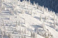 покрытый снежок горных склонов Стоковая Фотография RF