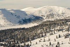покрытый снежок гор стоковое фото