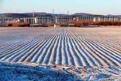 покрытый снежок ландшафта стоковые изображения