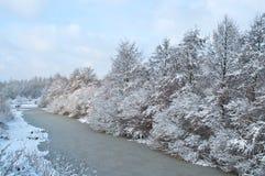 покрытый снежок ландшафта Стоковая Фотография RF