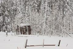 покрытый снежок лачуги стоковое изображение rf