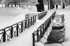 покрытый снежок парка Стоковая Фотография