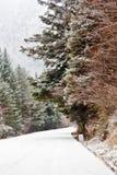 покрытый снежок дороги Стоковые Фото