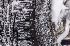 Покрышка автомобиля зимы Стоковые Изображения