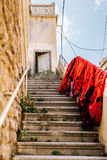 покрышка Ливана стоковое фото rf
