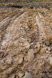 покрышка следа песка Стоковая Фотография RF
