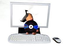 покупать он-лайн стоковое изображение rf
