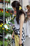 покупая цветки выходят детенышей вышед на рынок на рынок женщины Стоковая Фотография RF