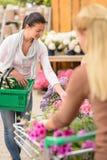 Покупки женщины клиента для садового центра цветков Стоковое Изображение