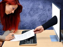 Покупки женщины онлайн Стоковое фото RF