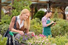 Покупки женщины для цветков в садовом центре Стоковые Изображения