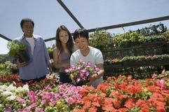 Покупки семьи для цветков в питомнике завода Стоковое фото RF