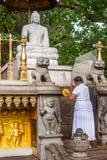 Поклонение Будды стоковые фотографии rf