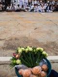 Поклонение лотоса стоковая фотография