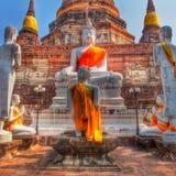 Поклонение Bhudda стоковые фото
