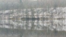 Полдень зимы на озере леса стоковые изображения rf