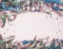 Полевые цветки обрамляют на розовой бледной предпосылке Стоковые Фото