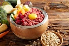 Полезная еда для собаки с сырым мясом стоковая фотография rf
