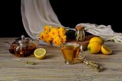 Полезный травяной чай с лимоном в чашке Стоковое фото RF