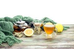 Полезный травяной чай с лимоном в чашке Стоковое Изображение RF