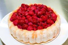 поленика торта стоковое изображение