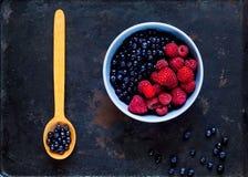 поленики и черника в голубом шаре на винтажной ржавой предпосылке металла Рудоразборка ягоды, концепция натуральных продуктов, стоковое фото rf