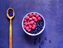 Поленики и черника в голубом шаре на голубой предпосылке Ягода комплектуя, концепция натуральных продуктов стоковые изображения rf