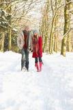 полесье пар снежное гуляя стоковое изображение rf