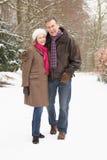 полесье пар старшее снежное гуляя стоковые фотографии rf