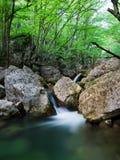 полесье потока Стоковые Фотографии RF