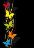 полет бабочки Стоковое фото RF