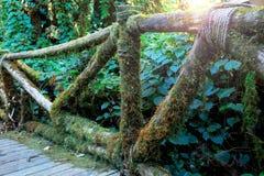 Полет загородку крытого моста стоковое фото rf